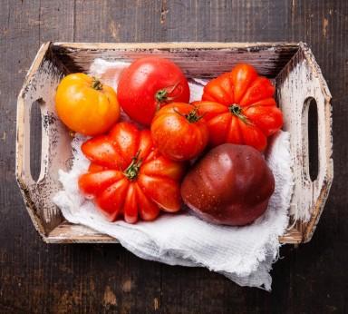 Variedad de tomate